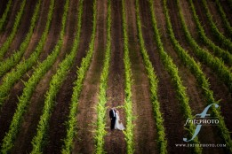 Youngberg Hill Vineyard Wedding
