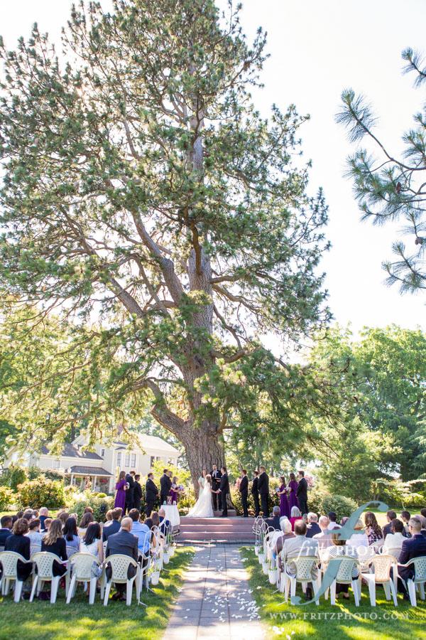 wedding under big beautiful tree in oregon city